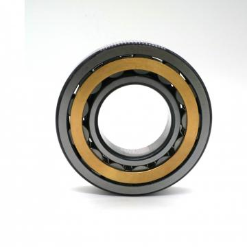 4.134 Inch | 105 Millimeter x 6.299 Inch | 160 Millimeter x 1.024 Inch | 26 Millimeter  CONSOLIDATED BEARING NJ-1021 M  Cylindrical Roller Bearings