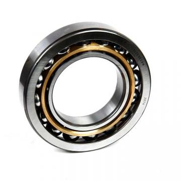 SKF 6015-2RS1/GJN  Single Row Ball Bearings