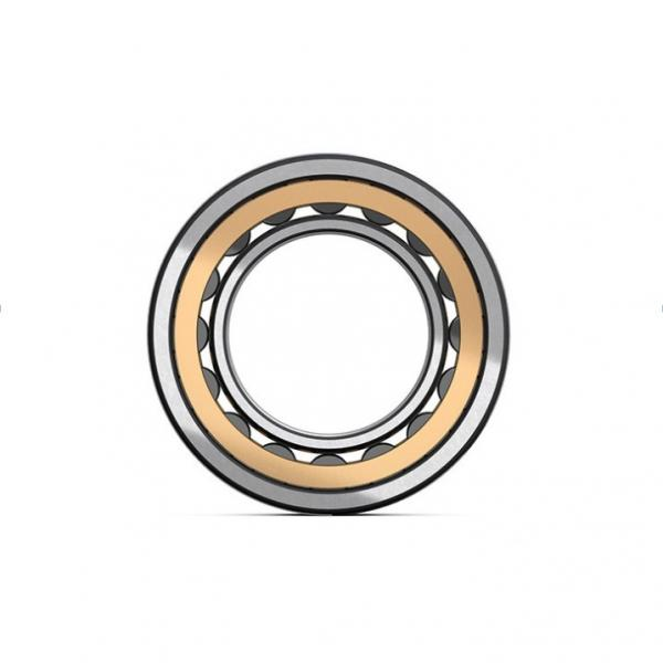 1.969 Inch | 50 Millimeter x 3.543 Inch | 90 Millimeter x 0.787 Inch | 20 Millimeter  CONSOLIDATED BEARING NJ-210E  Cylindrical Roller Bearings #5 image